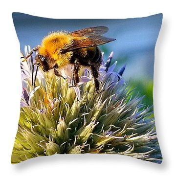 Curious Bee Throw Pillow