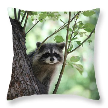 Curious But Cautious Throw Pillow