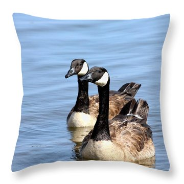Throw Pillow featuring the photograph Curious Canda Geese by Sheila Brown