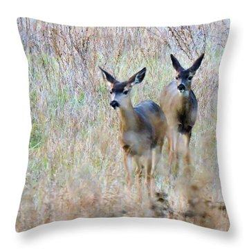 Curious Duo Throw Pillow
