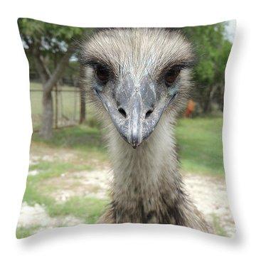 Curious Emu At Fossil Rim Throw Pillow