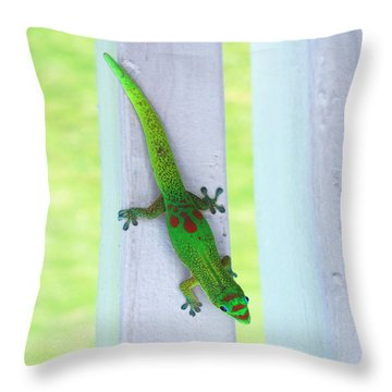 Curious Gecko Throw Pillow