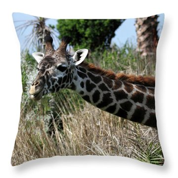Curious Giraffe Throw Pillow