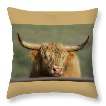 Curious Highlander Throw Pillow