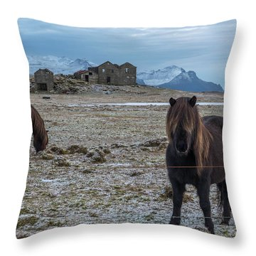 Curious Horse Throw Pillow