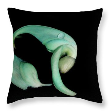 Curled Together Throw Pillow