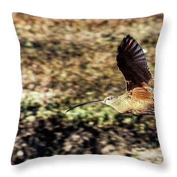 Curlew In Flight Throw Pillow