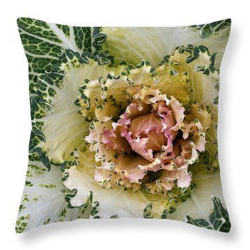 Curly To The Core Throw Pillow