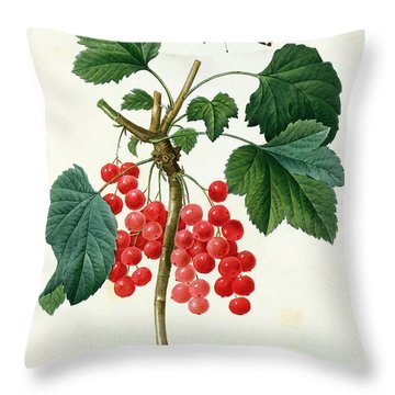 Currants  Red Throw Pillow