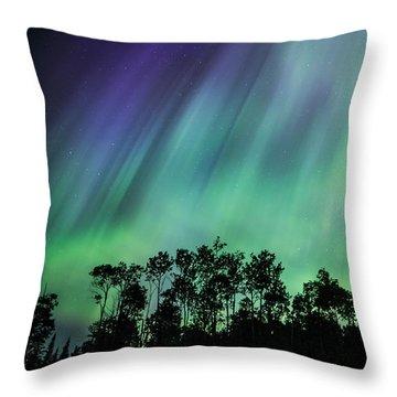 Curtain Of Lights Throw Pillow