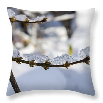 Curved Clumps Of Ice Throw Pillow