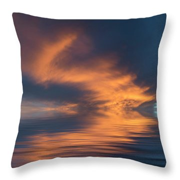 Curved Throw Pillow by Jerry McElroy