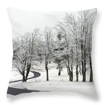 Mac Rae Field Curved Path Throw Pillow