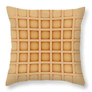 Curves Abstract 009 Throw Pillow