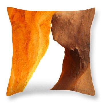 Curves Throw Pillow by Don Mennig