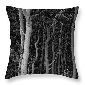Throw Pillow featuring the photograph Curves Of A Forest by James BO Insogna