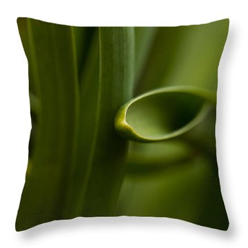 Curves Of Nature Throw Pillow