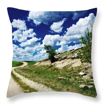 Curving Gravel Road Throw Pillow