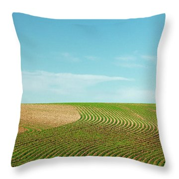 Curvy Rows Throw Pillow