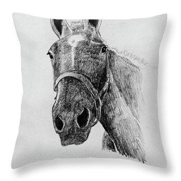 Cut The Horse Throw Pillow