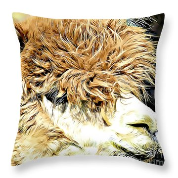 Soft And Shaggy Throw Pillow by Kathy M Krause