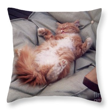 cute cat pictures - Another Rough Day Throw Pillow