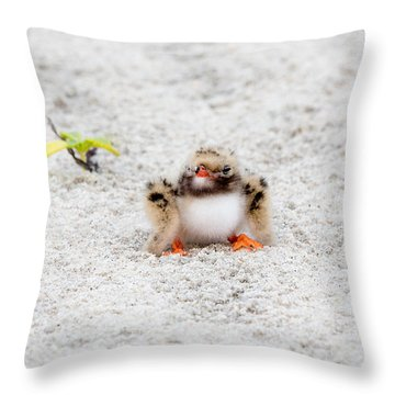 Cute Chick At Beach Throw Pillow
