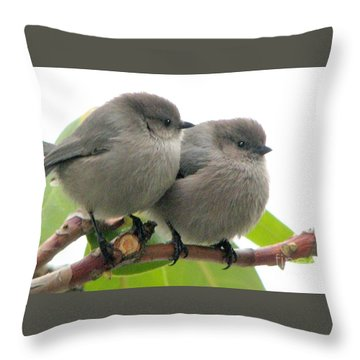 Cute Chicks Throw Pillow