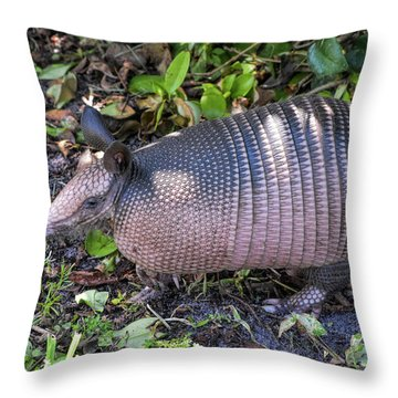 Cute Coat Of Armor Throw Pillow