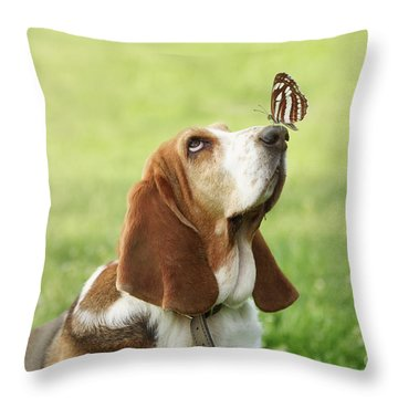 Cute Dog With Butterfly On His Nose Throw Pillow