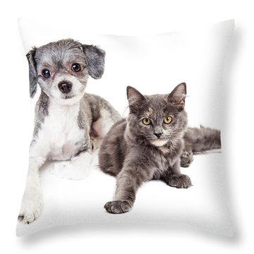 Cute Grey Kitten And Puppy Laying Together Throw Pillow