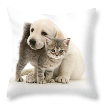 Cute Kitten And Perfect Puppy Throw Pillow