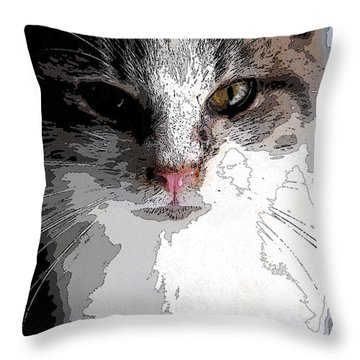 Cute Kittie Throw Pillow