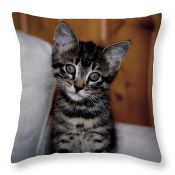 Throw Pillow featuring the photograph Cute by Laura Melis