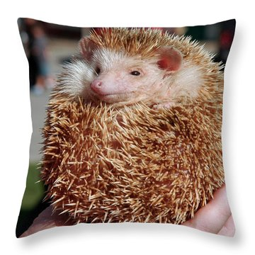 Cute Little Hedge Ball Throw Pillow
