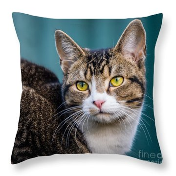 Cute Little Poser Throw Pillow