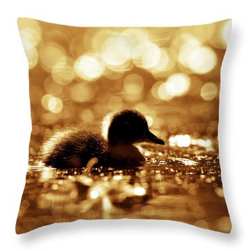 Cute Overload Series - Duckling Reflections Throw Pillow