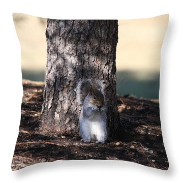 Throw Pillow featuring the photograph Cute Squirrel by Vadim Levin