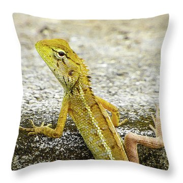 Cute Yellow Lizard Throw Pillow