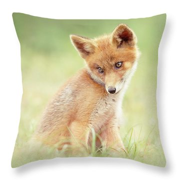 Cuteness Overload Series - Young Red Fox Throw Pillow