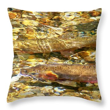 Cutthroat Trout In Clear Mountain Stream Throw Pillow by Greg Hammond