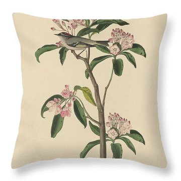 Cuvier's Wren Throw Pillow