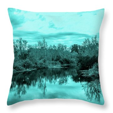 Throw Pillow featuring the photograph Cyan Dreaming - Sarasota Pond by Madeline Ellis
