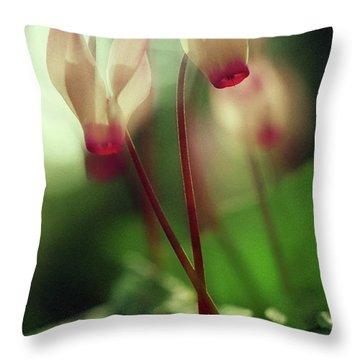 Cyclamens Throw Pillow by Dubi Roman