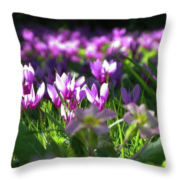 Cyclamens Throw Pillow by Maria Joy