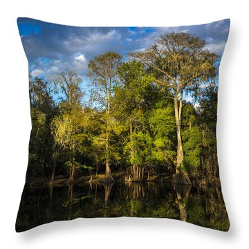 Cypress And Oaks Throw Pillow