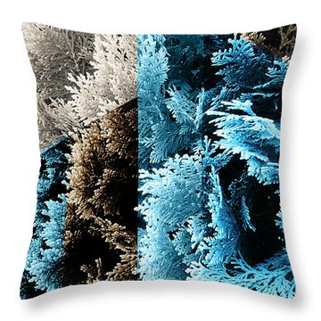 Cypress Branches No.3 Throw Pillow