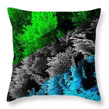 Cypress Branches No.6 Throw Pillow by Cesar Padilla
