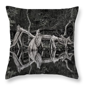 Throw Pillow featuring the photograph Cypress Design by Steven Sparks