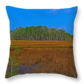 Cypress Hammock Throw Pillow